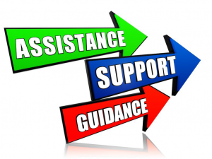 We Assist Support and Guide You